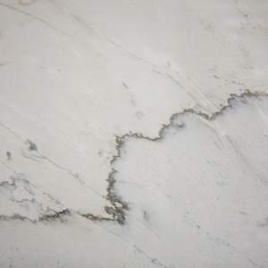 White Macauba Crosscut
